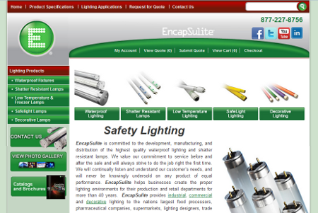 Encapsulite Website